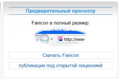 WP-favicon-kod-v-function-php-2