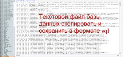файл БД