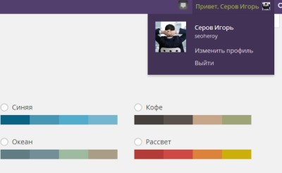 Поменять цвета панели WP