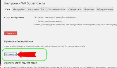 wp-super-cashe-04