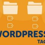 Метки WordPress, как с ними работать