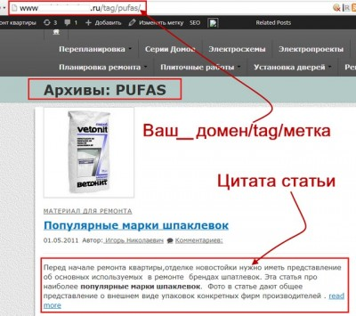 Метки WordPress