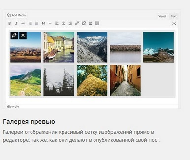 Wordpress-3-9-foto-7
