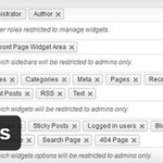 Плагин показа виджетов Restrict Widgets на WordPress
