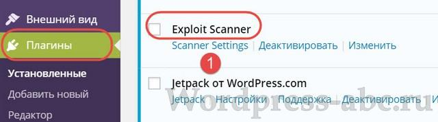 плагин-Exploit Scanner-wordpress-02