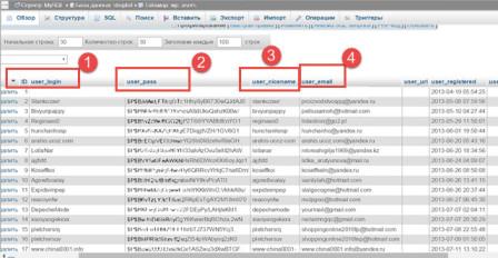 export-пользователей-wordpress