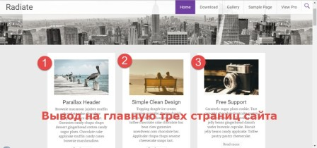 светлая тема WordPress Radiate