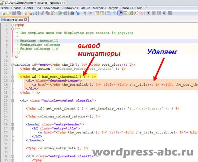 внешний-вид-архивов-wordpress-1