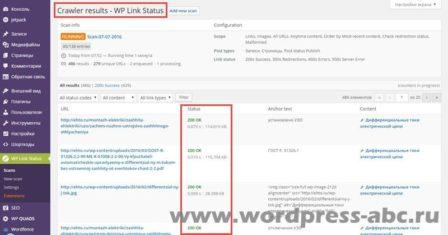 результат-сканирования-wp-link-status