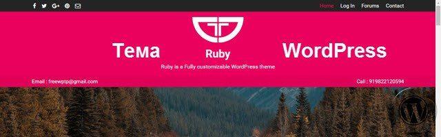 шаблон для сайта, интернет магазина WordPress