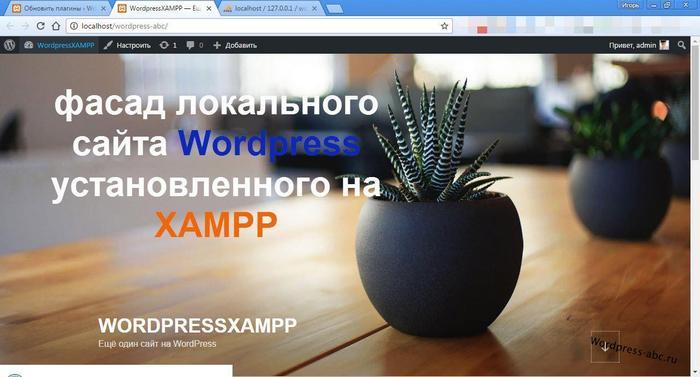 сайт wordpress на локальном сервере XAMPP
