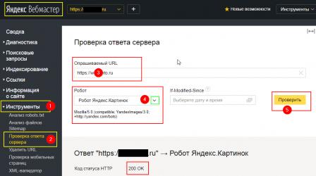 Проверка ответа сервера —Яндекс.Вебмастер