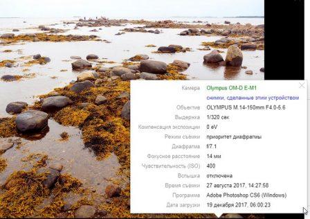 пример EXIF фото на Яндекс.Фото