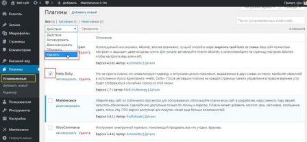 удалить плагин в административной панели WordPress