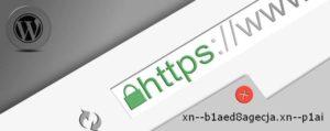 протокол SSL на русский домен