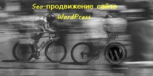 Seo–продвижение сайта WordPress